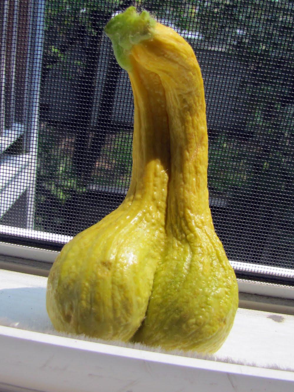 В жопе овощи фото, полную жену ебут в попу